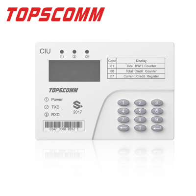 Consumer Interface Unit (CIU)